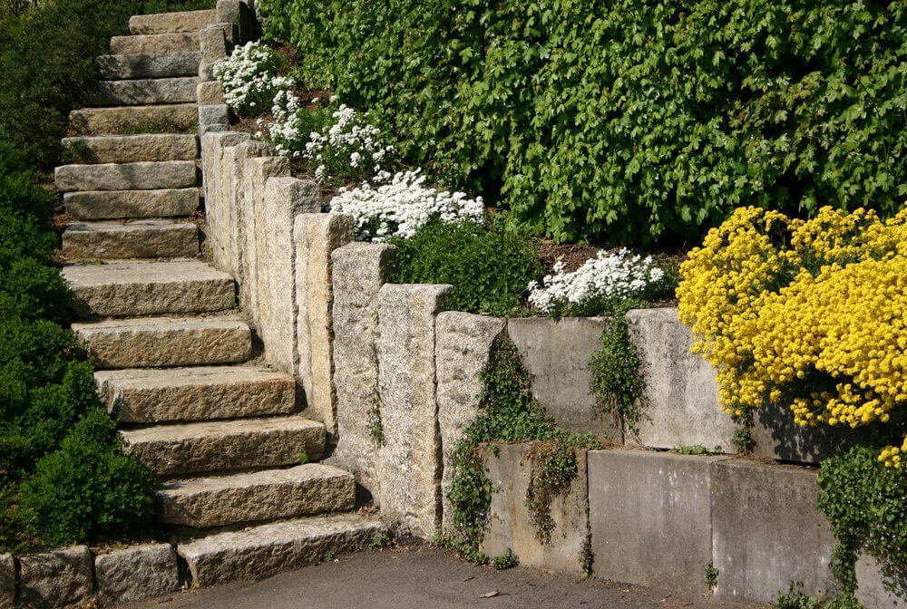 The stony garden steps are set apart by vertical slabs on one side and unclipped hedges on the other. The vertical slabs seem to overflow with perennial flowers, shrubs, and climbing vines.