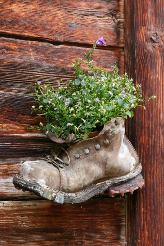 Little Florart Japan home ecureuille boot planter.