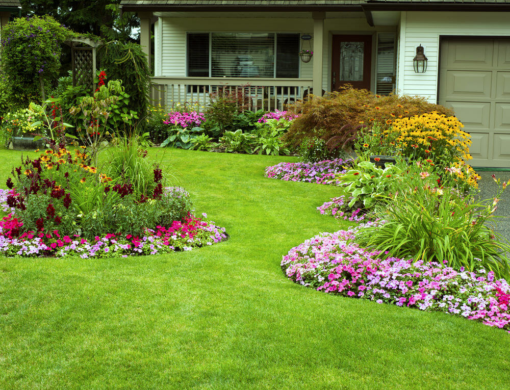 Dazzling petunias and daisies are sparkling on the grassy edges.