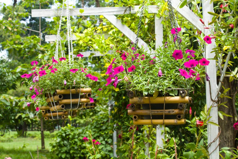 Two large hanging flower baskets whose pots are held in large homemade bamboo containers that contain the flowerpots suspended from white wooden posts.