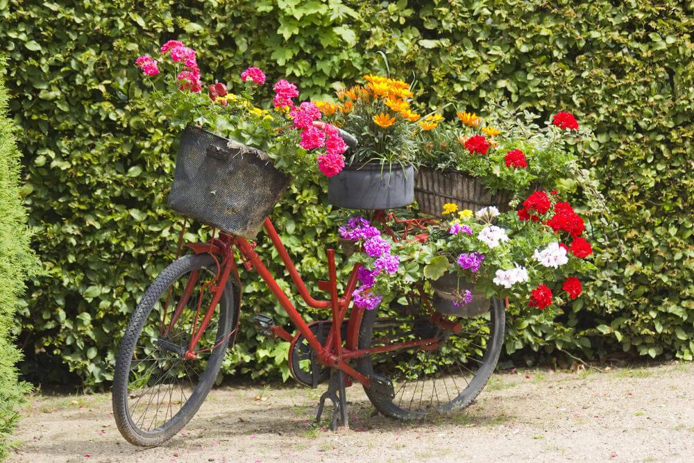 Red bike loaded with flowers.