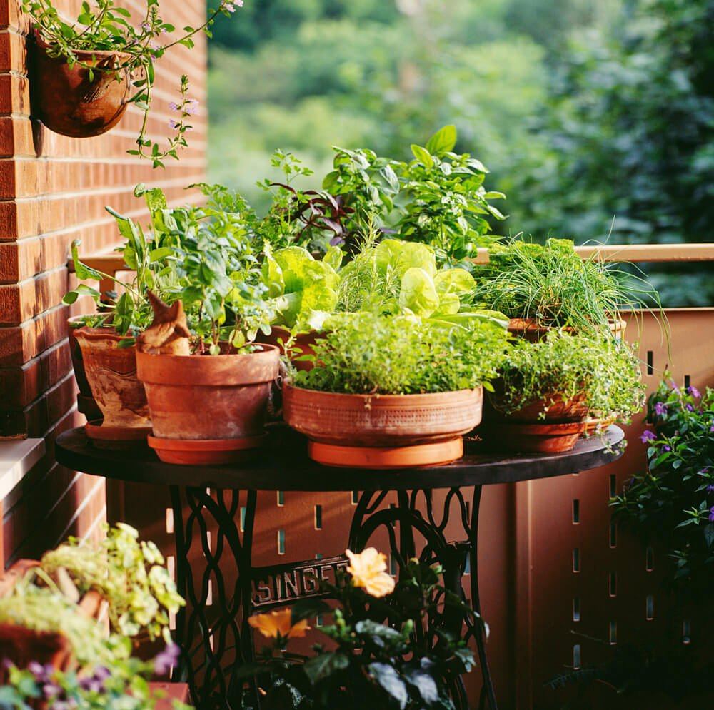Example of a cluster of small flower pots on a small table in the corner of a patio.