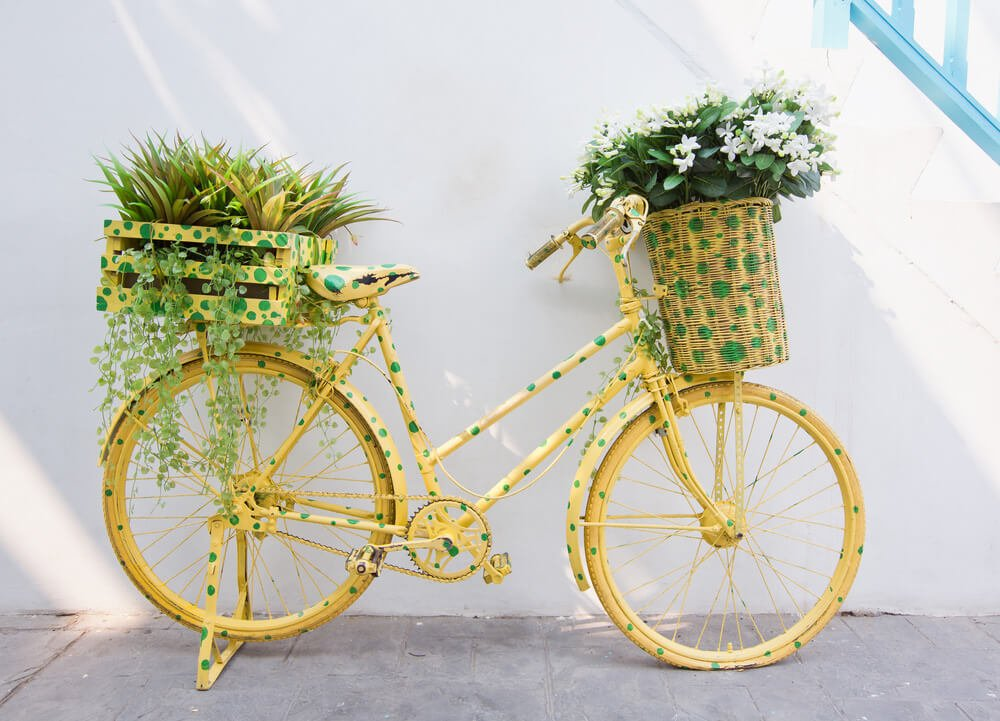 Yellow bike with green polk-a-dots with flower planters (wicker and red) on the front and back.