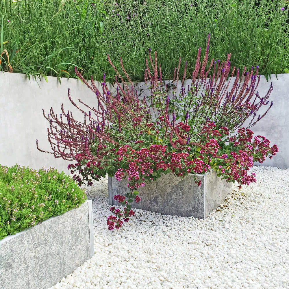 Another example of a cement flower pot on a white gravel patio.