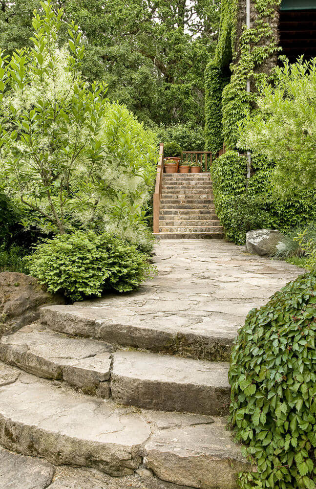 Green foliage serves as a backdrop, as crawling vines have climbed parts of the house while mixed evergreen shrubs line up the stoned pathway. Only the stony staircase outside and the stoned pathway are left free from the invasion of greenery.