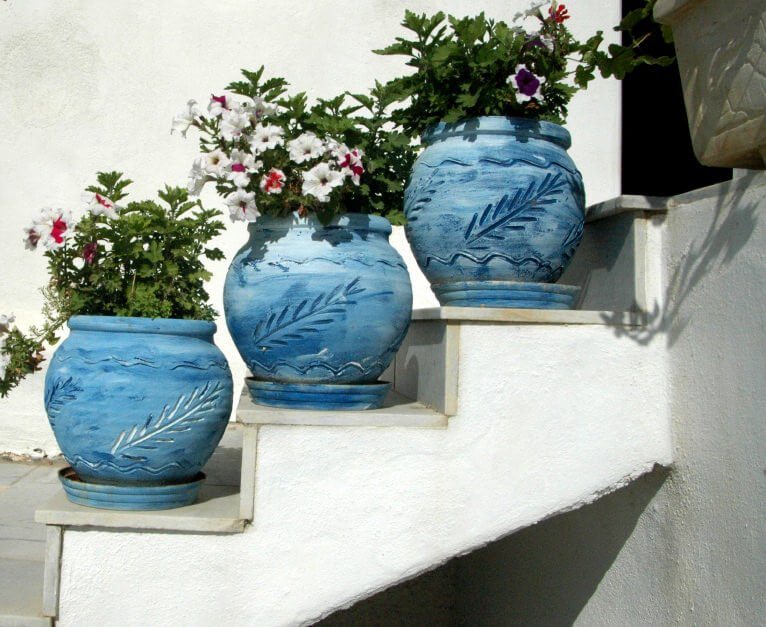 White petunia blossoms planted in blue pots give a touch of heaven- like view. The calming color combination is simple and neat. Not only that, the huge pots serve as the corner guards on the steps as there are no railings on it.