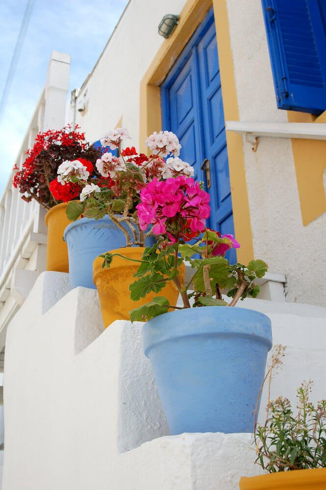 Planted with begonias or geraniums, these yellow and blue colored pots are no doubt striking. They literally matches the house's paint colors on the door and windows, while the white steps keep it simple.