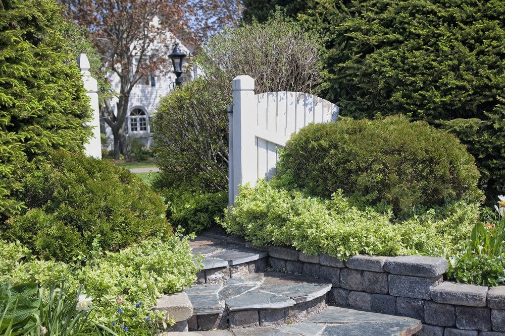 Unclipped hedges are tucked neatly by the landscaped stone-styled garden steps outside the white wooden gate.
