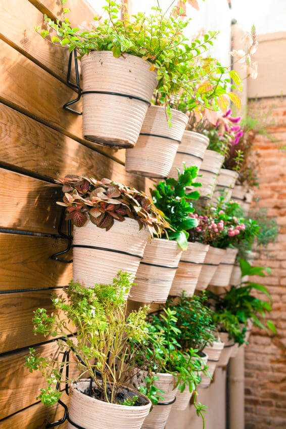 I love the creativity here of creating a wall garden on this privacy wall (or fence) that borders the patio.