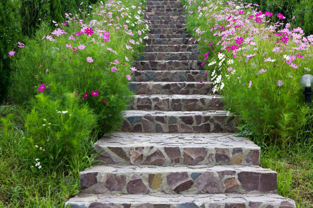 Colorful shamrocks look as if they're joyously singing as they line these stone garden steps, making for a magnificent feel for an entrance.