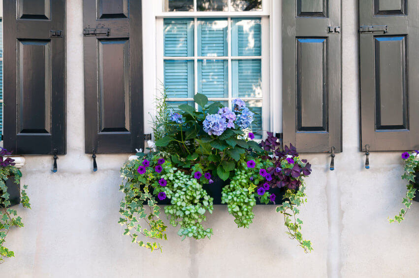 If you have a hanging vase like the one below, you can use hydrangeas as the centerpiece. Surround it with smaller flowers to emphasize the hydrangea.