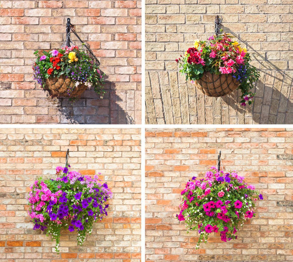 A picture collage of four incredible hanging flower baskets hanging from brick walls. A great example of how you can attach flower baskets to walls including brick walls making them look prettier.