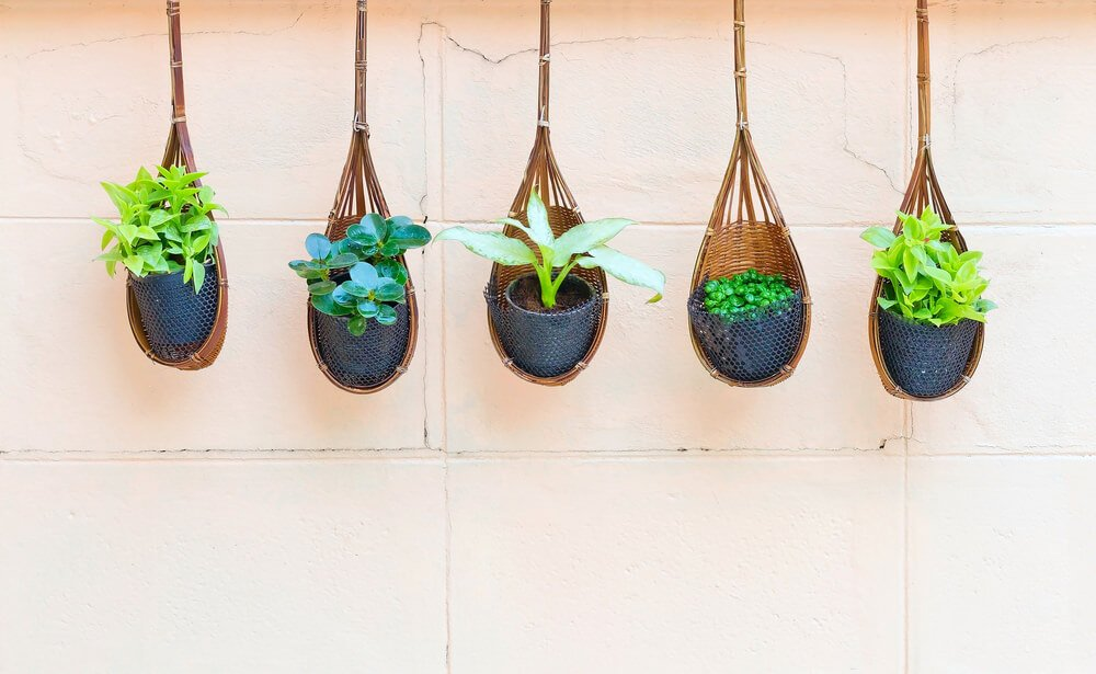 A line of five small hanging plants in unique wicker baskets.