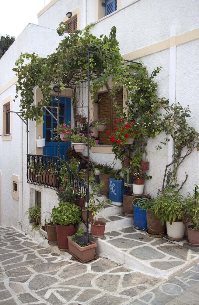 There are cans, plastic containers, plastic pots, rectangular pots, and hanging planters occupying the front door area down the staircase. Vines are intertwining on the railings while plants rest in the pots and hanging planters.