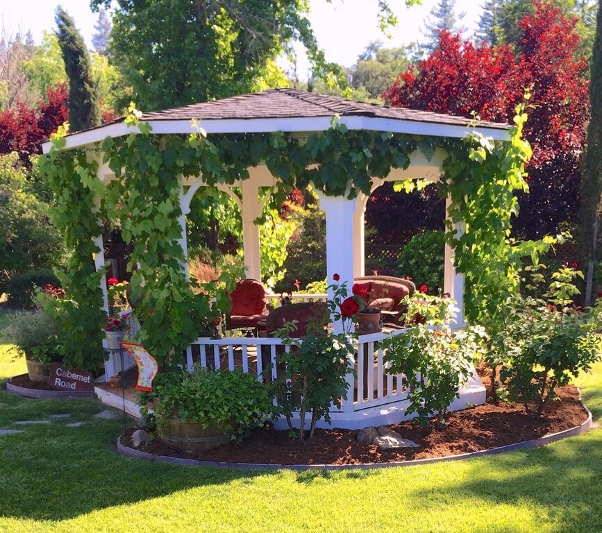 This white gazebo is surrounded by shrubs and covered in crawling vines. The vines mixed with the other greenery give this cozy gazebo a welcoming and airy feel that blends well with the nature around it.