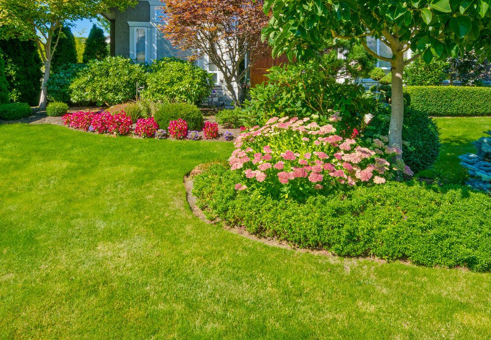 Simple grass edging and landscaping furnished with blossoms and trees as center pieces.