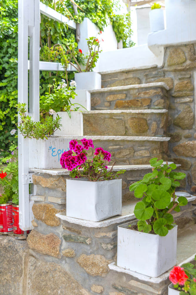Resting on each step are square cans painted with white paint. It complements well with the white wall and steps edging.