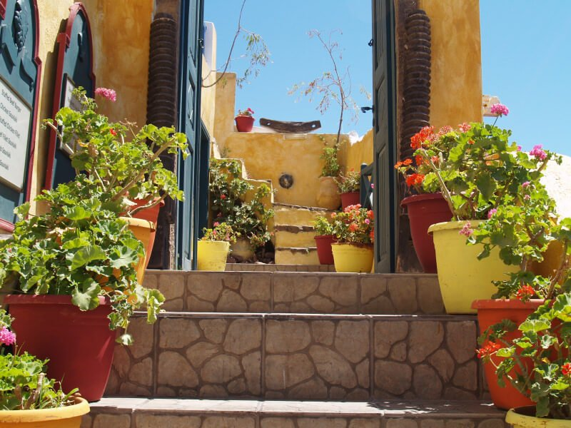 A mix of blossoming and green plants, along with decorative pots is just enough to attract a good view. The containers are painted in yellow and red and placed from the lower steps up to the highest steps.