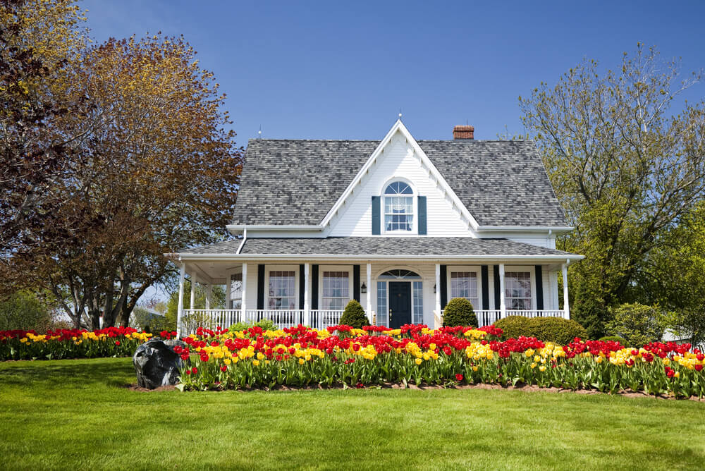The elegance of this white house is given more emphasis as the stunning red and yellow color effect of tulip blossoms surround it.