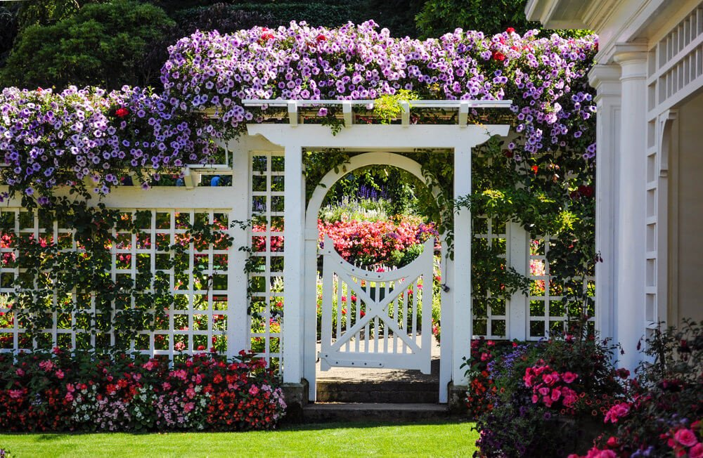 This is a great floral garden gate idea. Colorful vine blooms and flower shrubs on the ground give an overwhelming welcoming presence. Inside is even more floral and paradise like.