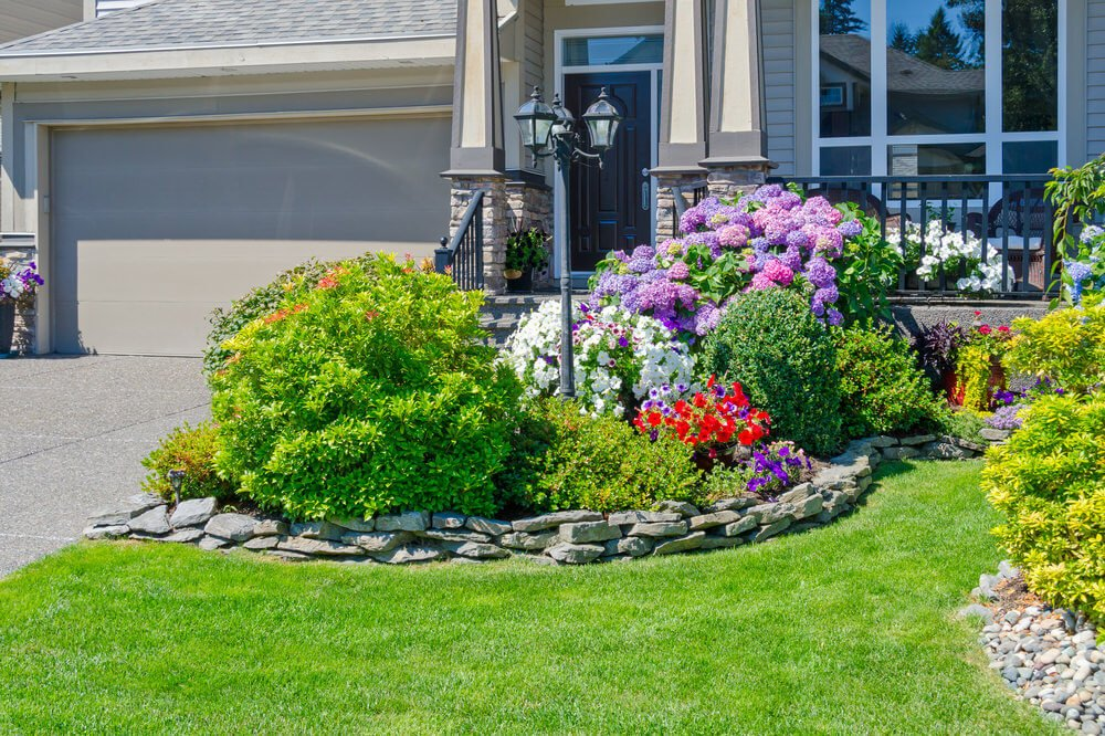 Stacked rubble stones serve as the decorative edging that separate grasses from the ornamental plants. You can find colorful petunias and mopheads blossoming with other greenery.