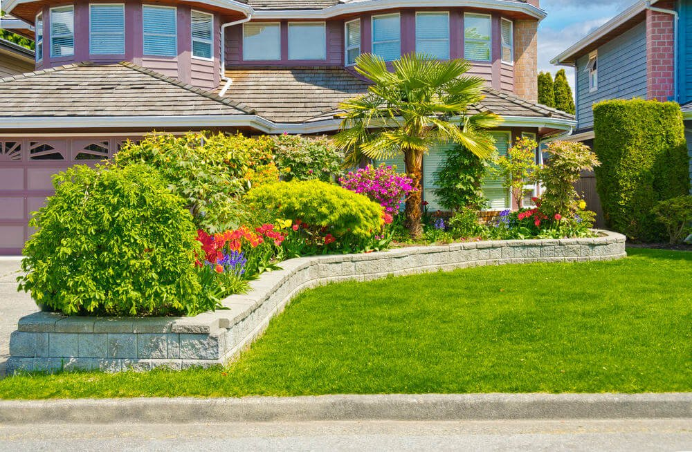 """Green Japanese maple shrubs, """"anahaw"""" or palm tree, daffodils, hyacinths, petunias and other greenery fill up the brick stone flower box."""