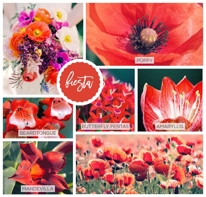 Fiesta red Spring flowers: beardtongue, mandevilla, butterfly pentas and amryllis.