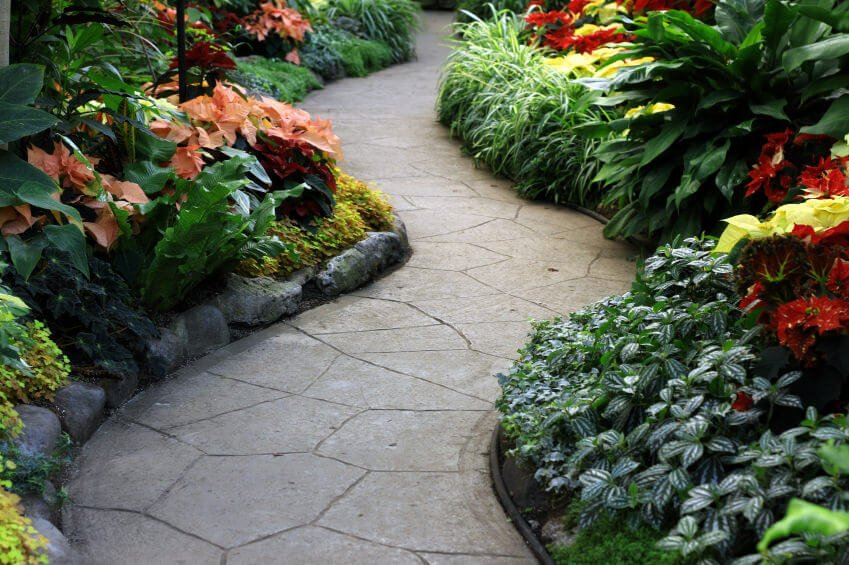 Tight gaps between flagstones show a fitted and neat pathway with its rock curb and colorful leaf shrubs.