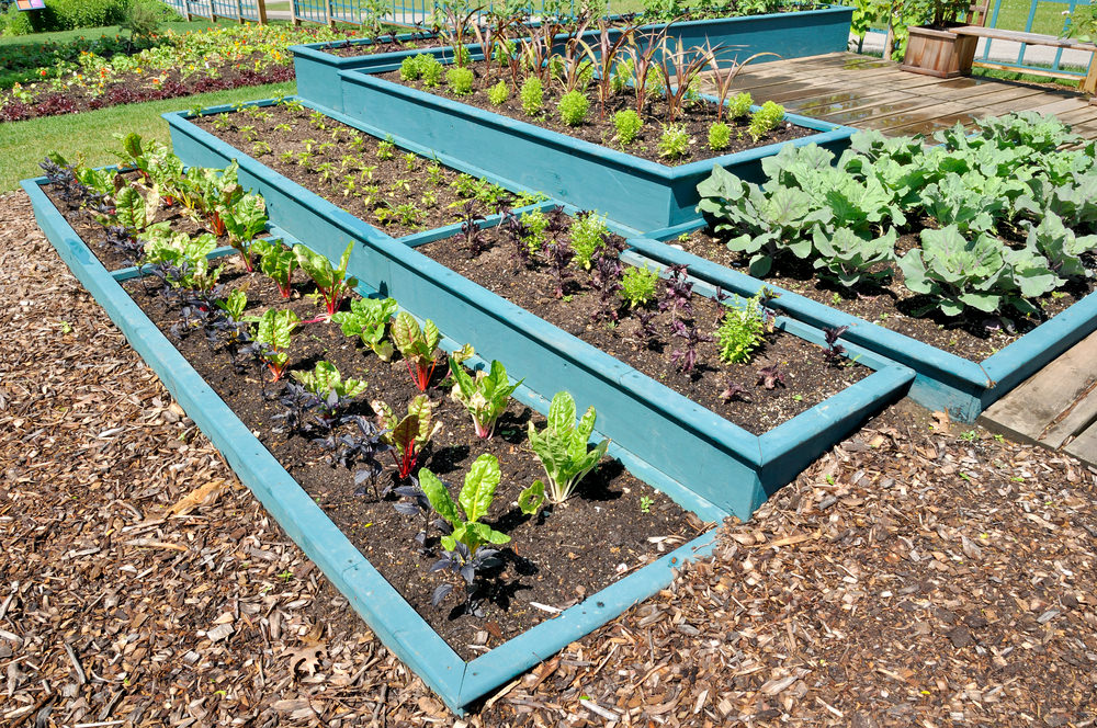 Add a pop of color to your raised garden by painting the wood vibrate colors. You can combine several different boxes into the design for easy organization of the vegetables, too.