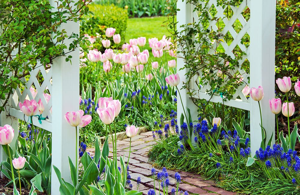 75 Garden Path Ideas And Designs Pictures Home