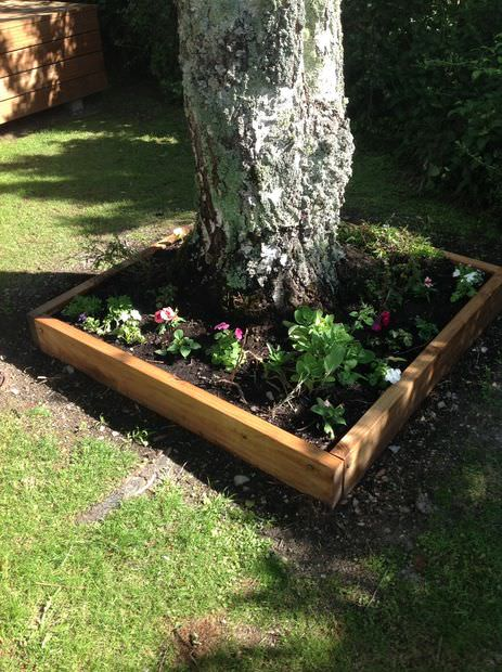 Raised beds aren't only used for vegetables, but they can be used for decoration too. As you see with this particular bed, it is built around a tree and filled with colorful flowers. Think about how much easier it is to cut the grass in a straight line, instead of trying to navigate around the trunk of this tree—and it's all thanks to the raised bed!