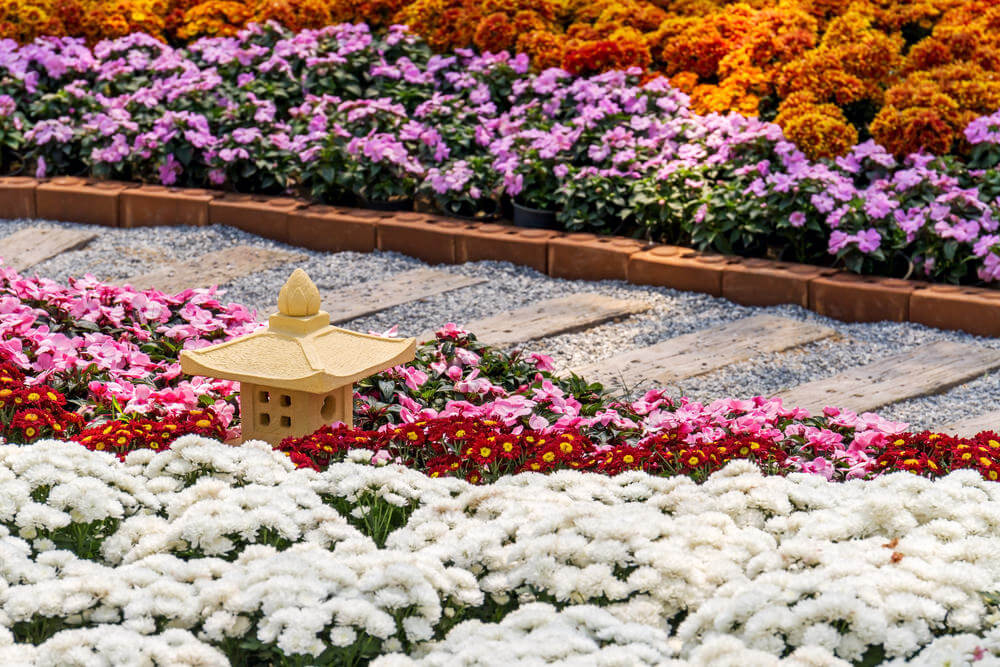 A brick curb secures the pebbles inside the pathway while the elongated pavers offer a guided way in the middle of flooding blossoms of chrysanthemum and marigolds.
