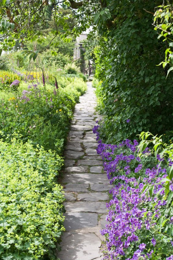 A flagstone pathway with purple blossoms and green shrubs cornering its lanes.
