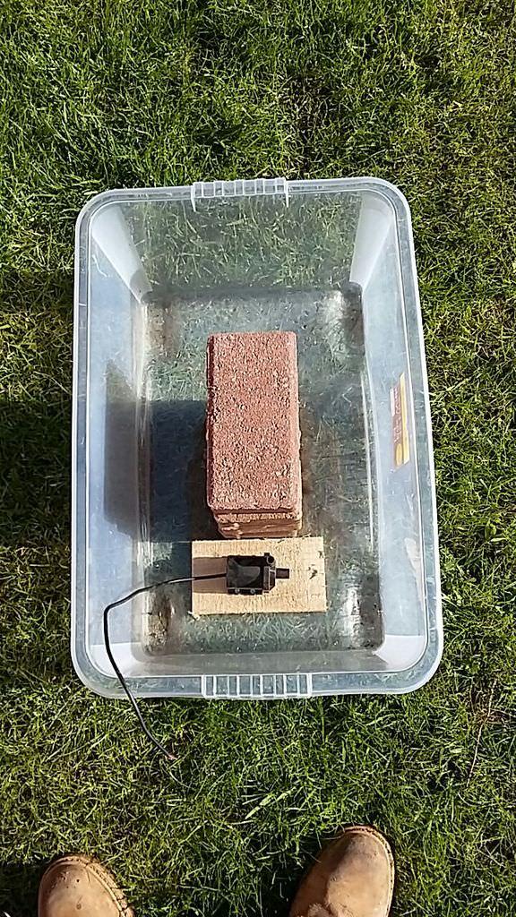 Step 5: Electrical