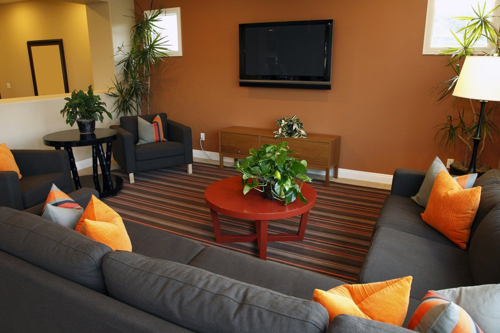 Simple orange wall living room with houseplants, striped carpet, dark gray sofa, orange pillows, and a round center table.