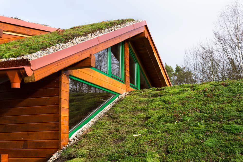 New house with grass roof