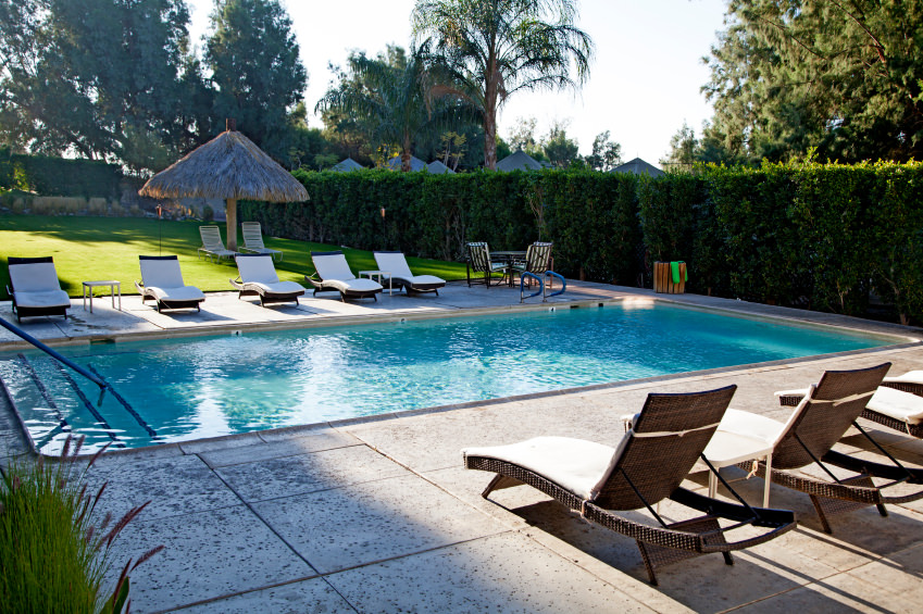 A rectangular swimming pool lined with privacy hedge and rattan lounge chairs that are fitted with white cushions. It includes a tiki hut with wicker seats over the lush green lawn.