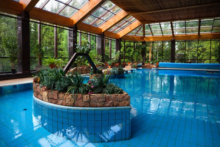An indoor pool filled with potted plants along with skylights and panoramic windows overlooking the enchanted forest.