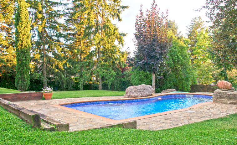 An in-ground pool in the middle of green grassy lawn showcases flagstone paving and towering trees serving as privacy screens.