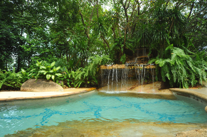 An in-ground swimming pool with a waterfall feature surrounded by vast greenery and canopy trees.