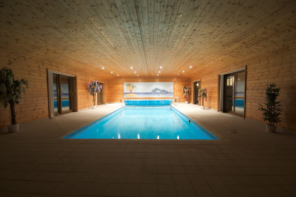 A warm house with an indoor pool decorated with a lovely dolphins wall art mounted on the wood plank walls that extend to the ceiling fixed with recessed lighting.