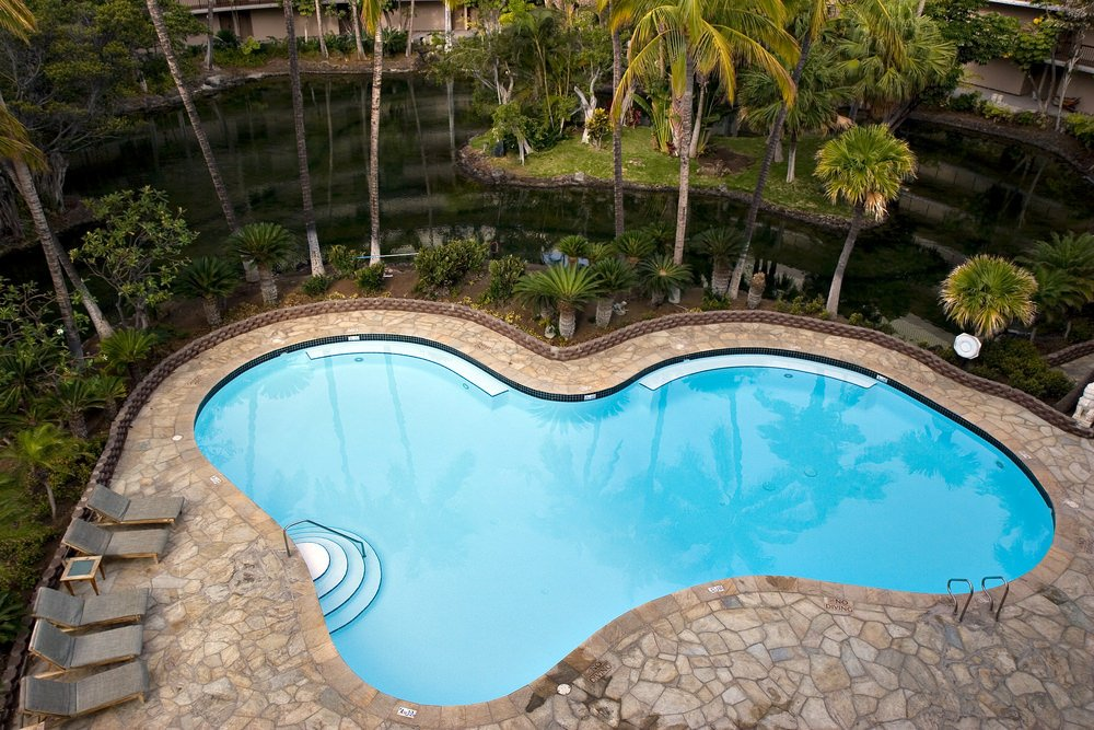 A curved swimming pool with gray loungers and flagstone paving surrounded by tropical plants and trees. There's a floating terrain on the side which adds an interesting feature in this place.