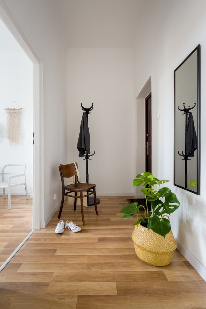 This entry features a narrow hallway featuring hardwood floors, white walls and a tall white ceiling.