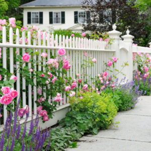 Elegant Garden Fence With Roses