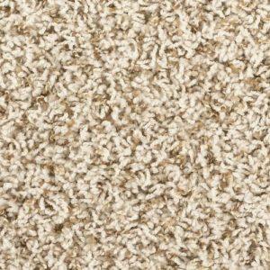 frieze carpet image
