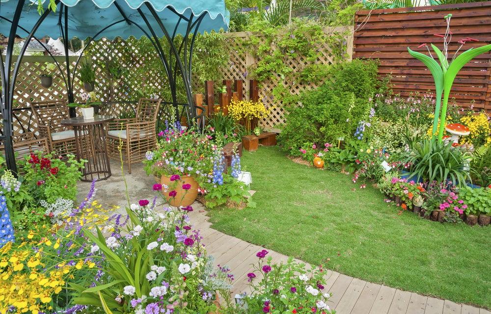 Gorgeous backyard garden