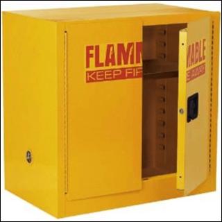 Secure garage storage box