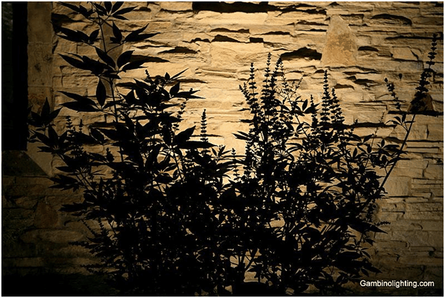 Silhouetting highlights a landscape element by putting the fixture behind it rather than in front of the object to create a silhouette effect.