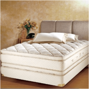 11 Different Types of Mattresses (Ultimate Buying Guide)