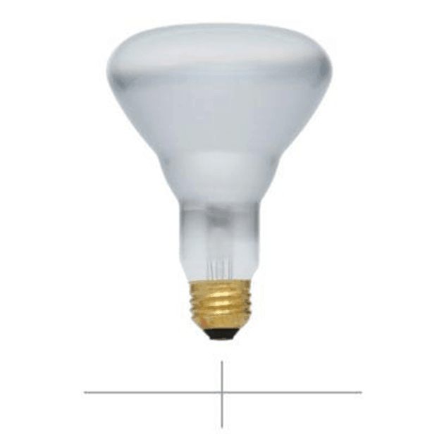 R-Type Light Bulbs